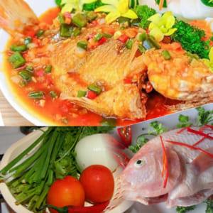 Ngon cơm cho cả nhà khi thưởng thức món cá diêu hồng sốt cà chua