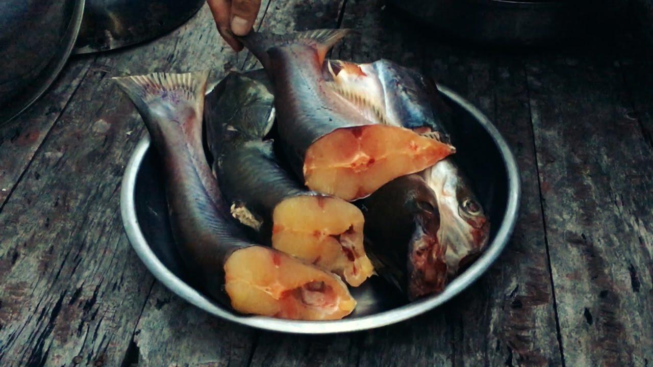 Vào bếp nấu món cháo cá tra ngon dễ gây nghiện cho cả nhà
